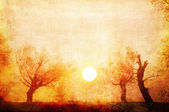 Art grunge creepy landscape showing old trees on the foggy autumn day — Stock Photo