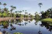 Beautiful lake in Jamaica — Stock Photo