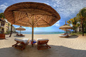 Loungers on a beach — Foto Stock