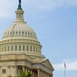 United States Capitol Building in Washington DC — Stock Photo #9185779