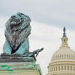 Lion Statue in Front of the US Capitol Building in Washington DC — Stock Photo