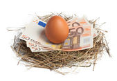 Money and brown egg in nest — Stock Photo