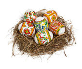 Easter eggs in nest isolated on white — Foto Stock