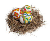Easter eggs in nest isolated on white — Foto de Stock