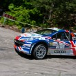 IRC PRIME Yalta Rally 2011 - Stockfoto