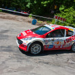 IRC PRIME Yalta Rally 2011 - Photo
