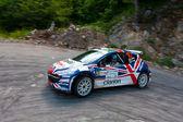 IRC PRIME Yalta Rally 2011 — Stock Photo