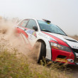 "The 5-th stage of the championship of Ukraine ""Alexandrov Rally"" - Stock Photo"
