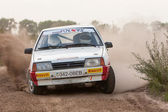 Championship of Ukraine, the rally Kyiv Rus — Foto Stock
