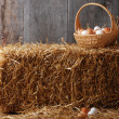Basket of eggs on hay bale - Stock Photo
