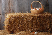 Basket of eggs on hay bale — Stock Photo