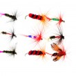 Isolated dry fishing flies — Stock Photo