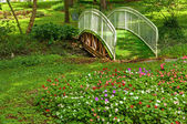 Garten — Stockfoto