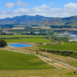 New Zealand Wine Country — Stock Photo