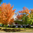 Fall in small town — Stock Photo #8199081