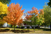 Fall in small town — Stock Photo
