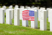Military graves — Stock Photo
