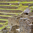 Terraces of Machu Picchu — Stockfoto