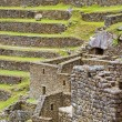 Terraces of Machu Picchu — Stok fotoğraf