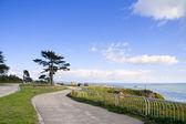 Walkway along the ocean side — Stock Photo