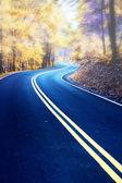 Estrada sinuosa na névoa da manhã — Foto Stock