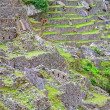 Terraces of Machu Picchu — Stock fotografie #8734890