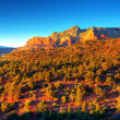 Arizona Red Rocks — Stock Photo #8734927