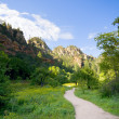 Hiking trail - Stock Photo