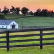 Horse Farm Sunset — Stock Photo