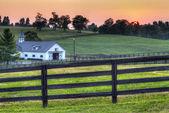 лошади фермы закат — Стоковое фото