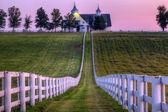 хорс-фарм — Стоковое фото