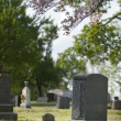 Stock Photo: Gravestones