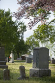 Gravestones — Stock Photo