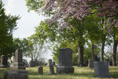 Spring Cemetery — Stock Photo