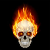 Burning skull — Stock Vector