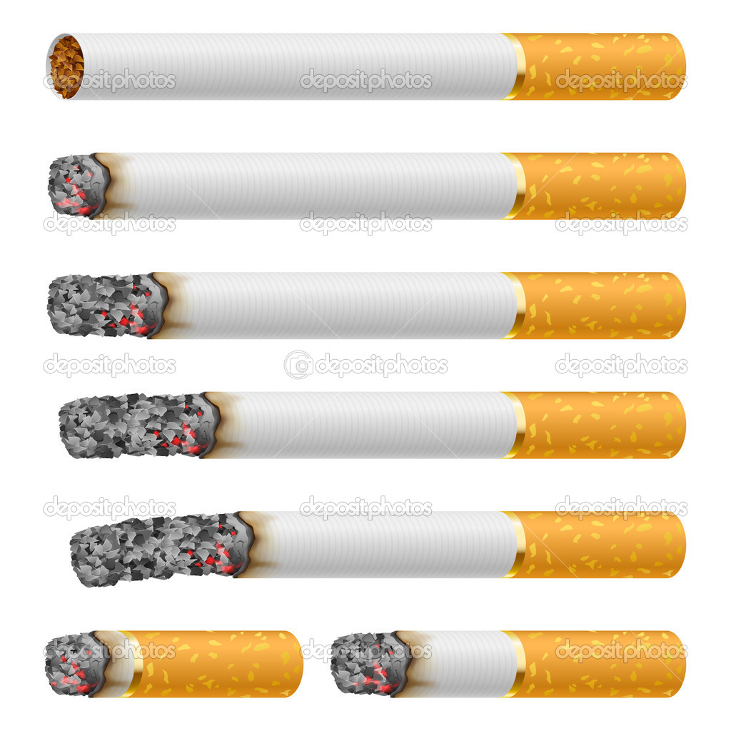 Set of Cigarettes During Different Stages of Burn. Each is isolated on white. — Stock Vector #10257372