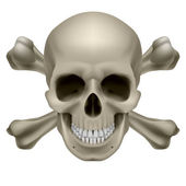 Realistic skull and bones — Stock Vector