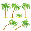 coconut palms — Stock Vector