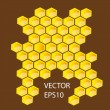 Vector honey combs — Foto Stock