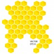 Vector honey combs — 图库照片