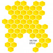 Vector honey combs — Stockfoto
