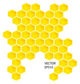 Vector honey combs — Stock Photo