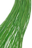 Green cables — Stock Photo