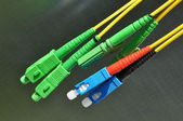 Optical cables — Stock Photo