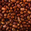 Background beans - Stock Photo
