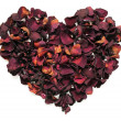 Heart of the petals — Stock Photo