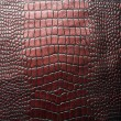 Crocodile leather — Foto de Stock