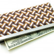 Money in female purse — Stock Photo #8138415