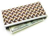 Money in female purse — Stock Photo