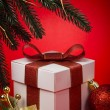 Gift Box — Stock Photo #8143393